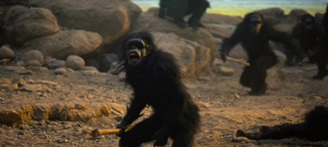 2001 A Space Odyssey Apes Gif